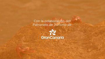 TURISMO DE GRAN CANARIA
